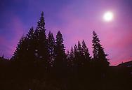 Winter solstice in the Sierra.