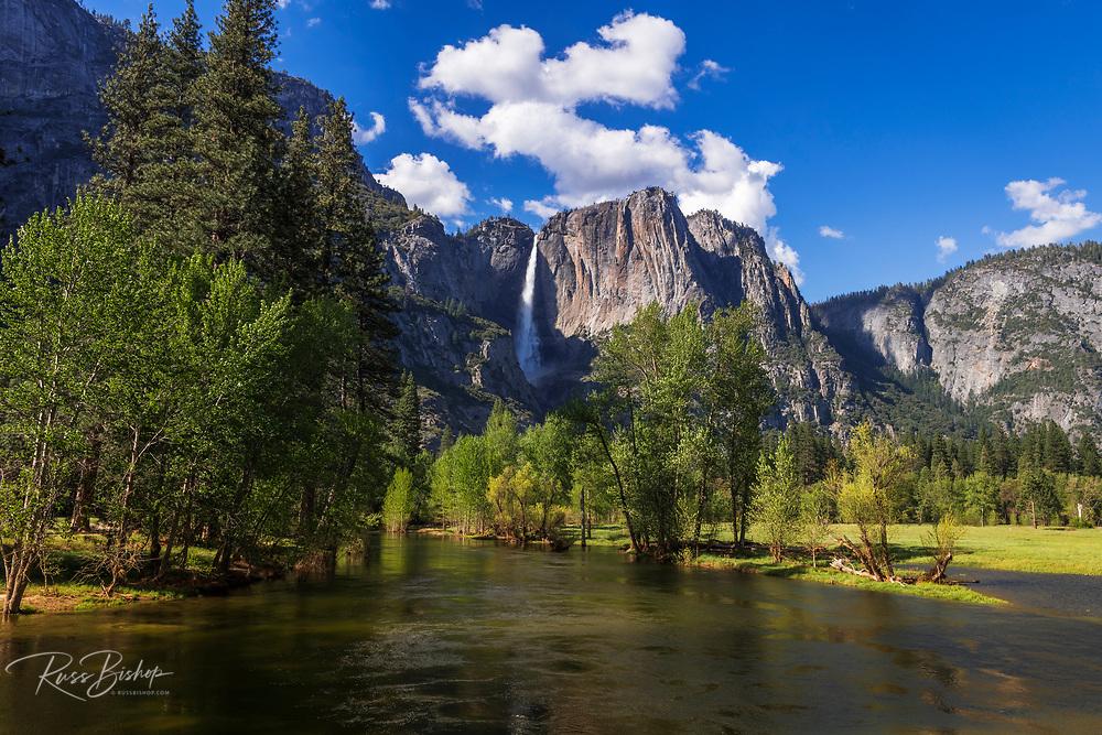Yosemite Falls above the Merced River, Yosemite National Park, California USA