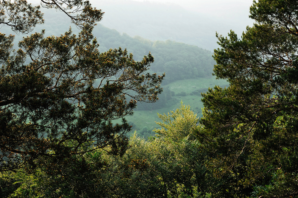 View near Berdorf and Maartbësch, Mullerthal trail, Mullerthal, Luxembourg