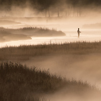 Fishing in the early dawn mist, Yellowstone