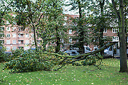 Half a tree blown down in a storm on Clapton common. <br /> The sever storm called St Jude is the worst to hit the Uk for years, it has caused sever damage to parts of the country with winds of up to 90mph.