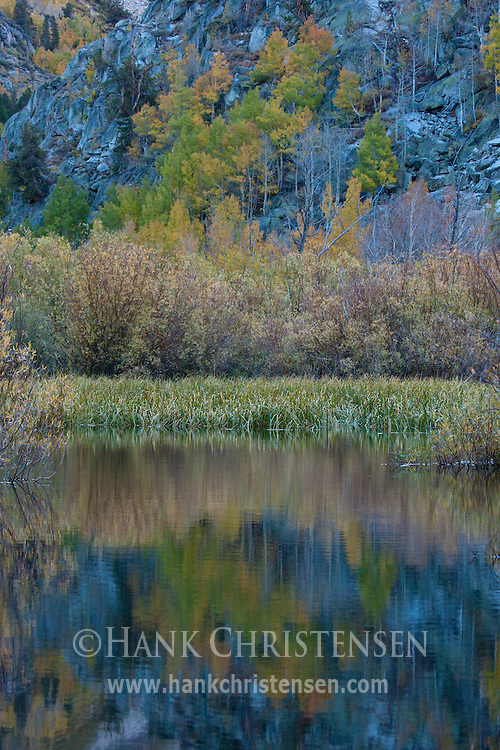 The mountainside is reflected in the still waters of a pond along the south fork of Bishop Creek, Inyo National Forest, CA