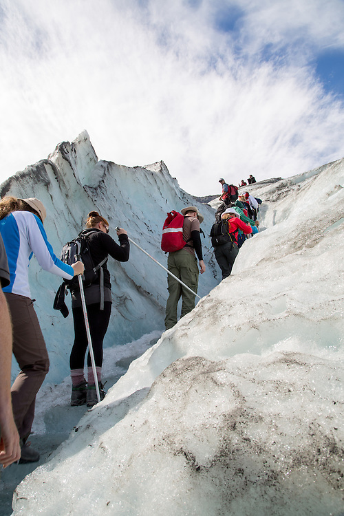 Hikers ascending Fox Glacier on a sunny New Zealand day.