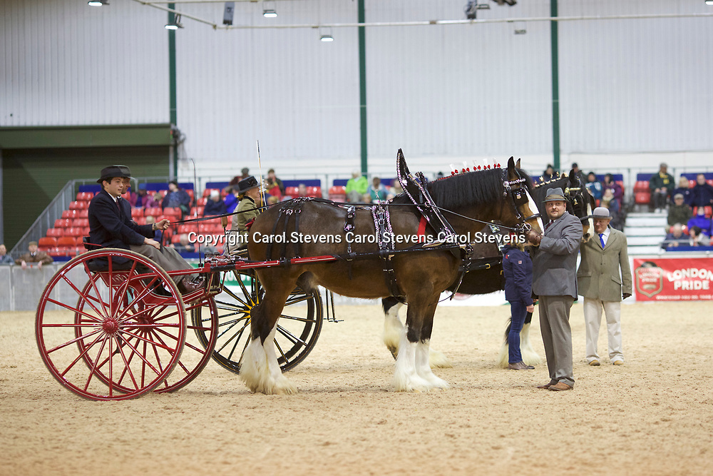 Shire Horse Society Spring Show 2017  Novice Drivers Shire Horse Society Spring Show 2017  Novice Drivers - Carts