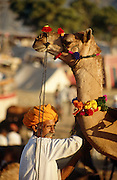 Camel trader at the Pushkar Fair, Rajasthan, India