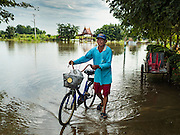 30 SEPTEMBER 2016 - SAI NOI, AYUTTHAYA, THAILAND:  A man pushes his bicycle through the flooded Wat Boonkannawas in Sai Noi. The Chao Phraya River, the largest river that runs through central Thailand, has hit flood stage in several areas in Ayutthaya and Ang Thong provinces. Villages along the river are flooded and farms are losing their crops due to the flood. This is the same area that was devastated by floods in 2011, but the floods this year are not expected to be as severe. The floods are being fed by water released from upstream dams. The water is being released to make room for heavy rains expected in October.     PHOTO BY JACK KURTZ