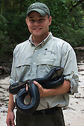 Eastern Indigo Snake (Drymarchon couperi) & Kevin Stohlgren<br /> CAPTIVE<br /> The Orianne Indigo Snake Preserve<br /> Telfair County, Georgia<br /> USA<br /> HABITAT & RANGE: Long leaf pine sandhills of central plains of Georgia, southern South Carolina south through Florida and west to Louisiana, Mississippi, and Alabama that are populated with Gopher Tortoises.<br /> Federally listed as THREATENED SPECIES