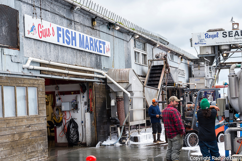 Fishermen in the early morning on the dock of Monterey, California.