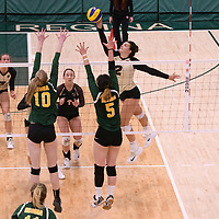 Women's Volleyball home game on February 10 at Centre for Kinesiology, Health and Sport. Credit: Arthur Ward/Arthur Images