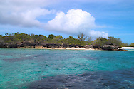 Aldabra Atoll, The Seychelles<br /> 'Champignon' rock formations and<br /> an emerald coloured lagoon<br /> c. Ellen Rooney