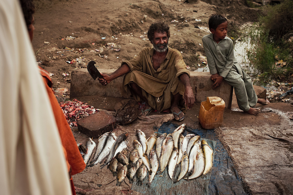 A man sells fish on the road  near the village of Geo Kaloid in Mirpur Khas district, Sindh, Pakistan on November 3, 2011. The village was completely destroyed in recent floods and residents are living in makeshift shelters alongside a nearby road. Many farmers are fishing in flooded fields to make a livelihood. In August 2011, Heavy monsoon rains triggered flooding in lower parts of Sindh and northern parts of Punjab.