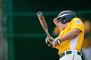Erial's Drew Liszewski  hits a single in the bottom of the second inning during a Section 4 Little League final against Cherry Hill held in Gloucester Sunday night.