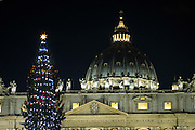 Vatican City dec 18 th 2015, in the picture the lightening of the Christmas tree in St Peter's Square