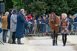 Klimke Ingrid, (GER), Horseware Hale Bob<br /> First Horse Inspection - Mitsubishi Motors Badminton Horse Trials <br /> Badminton 2015