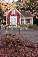 Hamilton House, Antique Farming Equipment and Liquid Amber Tree in Fall Season / Centennial Heritage Park, Glendora, California