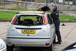 ©  London News Pictures. 15/10/2012. Harlow, UK. A dog being used by  fire investigation team to examine a burnt out car at the scene on Barn Mead, Harlow, Essex where three children and a woman have died and three others are in hospital following a house fire. Two boys aged 13 and six, a girl aged 11 and the woman were declared dead at the scene. A nine-year-old boy and a three-year-old girl have serious burns and a man has minor burns. Photo credit : Ben Cawthra/LNP