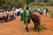 David Sheldrick Wildlife Trust is the most successful orphan-elephant rescue and rehabilitation center.  Visit of schoolchildren is part of the Community Outreach Program to raise awareness. Nairobi, Kenya.