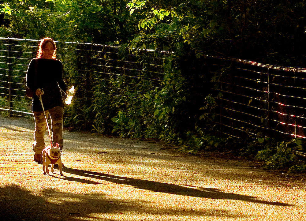 This was very late in the day in Summer, one of the few times a year you get sun light on this path at this time.