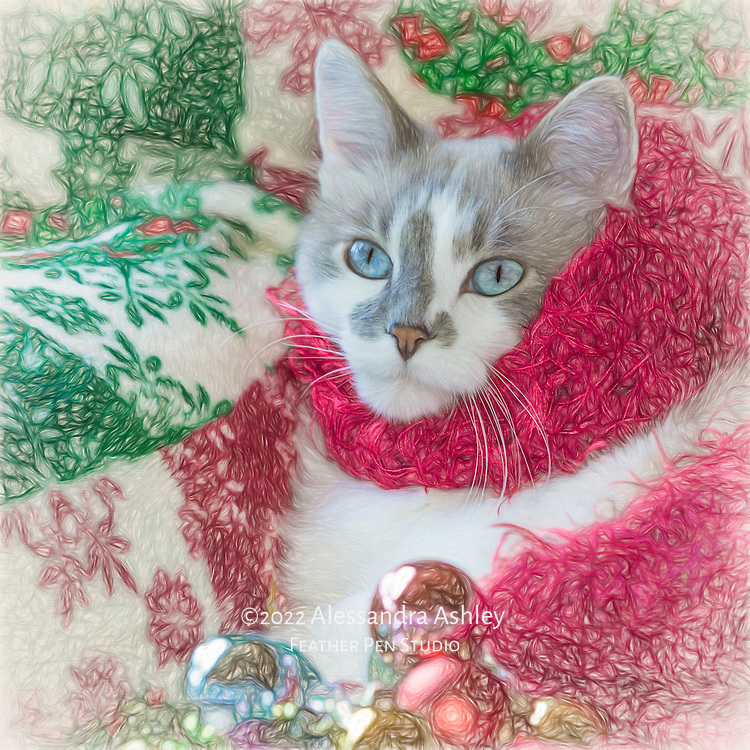 Long-haired, blue-eyed cat, wrapped in cozy scarf, awaits the holiday season. Pencil drawing effects blended with original photo.
