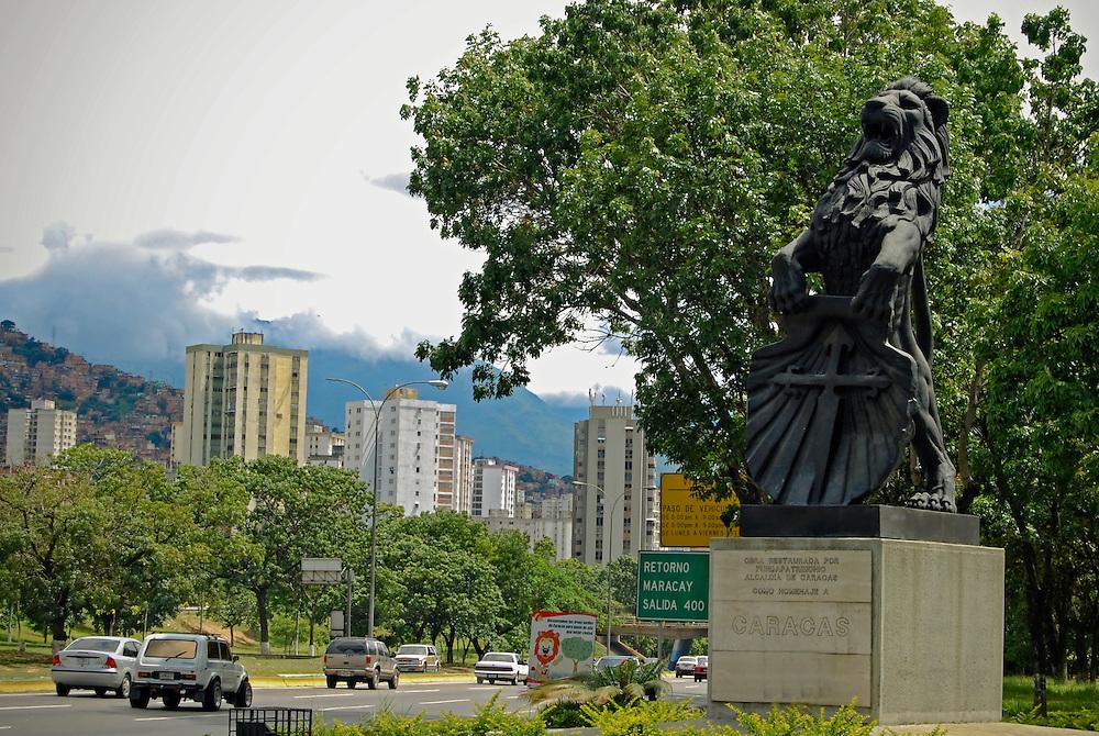 EL LEON DE CARACAS<br /> Caracas - Venezuela 2008<br /> Photography by Aaron Sosa