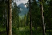 The Dolomites, Parco Naturale Dolomiti, Friulane, Italy