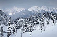 North Cascades after fresh snowfall, seen from Heather Meadows Recreation Area, Washington