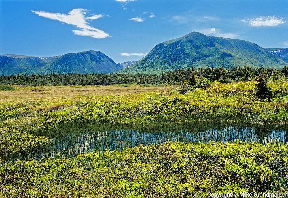 Long Range Mountains<br /> Stephenville<br /> Newfoundland & Labrador<br /> Canada