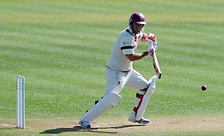 Somerset's Jim Allenby cuts the ball off the bowling of Durham's Graham Onions.  - Photo mandatory by-line: Harry Trump/JMP - Mobile: 07966 386802 - 14/04/15 - SPORT - CRICKET - LVCC County Championship - Day 3 - Somerset v Durham - The County Ground, Taunton, England.