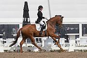 Stephanie de Frel - Golden Dream STH<br /> Pavo Cup 2015<br /> © DigiShots