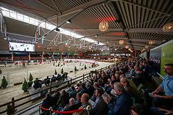 Overview<br /> Hengstenkeuring BWP - Lier 2018<br /> © Hippo Foto - Dirk Caremans<br /> 20/01/2018