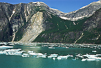 Small icebergs floating in the waters of Tracy Arm below the Coast Mountains, Alaska.