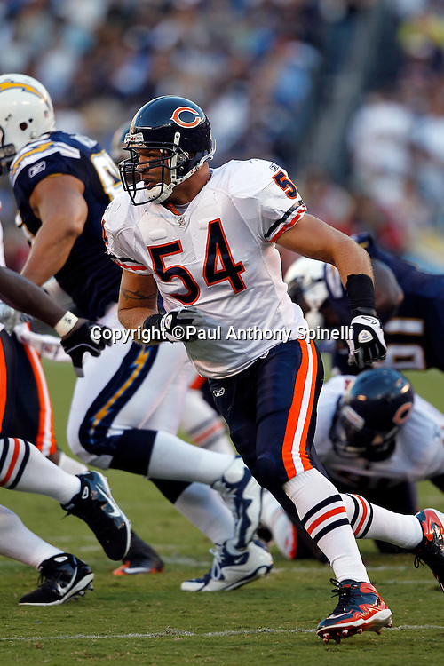 Chicago Bears linebackers Brian Urlacher (54) chases the action during a NFL week 1 preseason football game against the San Diego Chargers, Saturday, August 14, 2010 in San Diego, California. The Chargers won the game 25-10. (©Paul Anthony Spinelli)