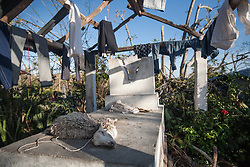 October 7, 2016 - Port Salute, Haiti - The remains of a drowned sheep lies in a damaged house in a village near Port Salute after hurricane Matthew hit the area, on October 7, 2016. Hurricane Matthew killed almost 900 people and displaced tens of thousands in Haiti before plowing northward on Saturday just off the southeast U.S. coast, where it caused major flooding and widespread power outages. (Credit Image: © Bahare Khodabande/NurPhoto via ZUMA Press)