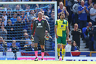 John Ruddy of Norwich and Russell Martin of Norwich look dejected after conceding their side&rsquo;s 1st goal during the Barclays Premier League match at Goodison Park, Liverpool<br /> Picture by Paul Chesterton/Focus Images Ltd +44 7904 640267<br /> 15/05/2016
