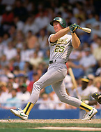 DETROIT - 1988:  Mark McGwire of the Oakland Athletics bats during an MLB game against the Detroit Tigers at Tiger Stadium in Detroit, Michigan during the 1988 season. (Photo by Ron Vesely)  Subject:  Mark McGwire