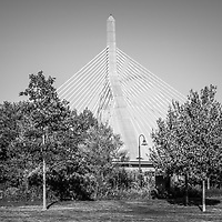 Boston Leonard Zakim Bunker Hill Bridge black and white photo with park trees. The Leonard P. Zakim Bunker Hill Memorial Bridge is a cable bridge that spans the Charles River in Boston, Massachusetts in the Eastern United States of America.