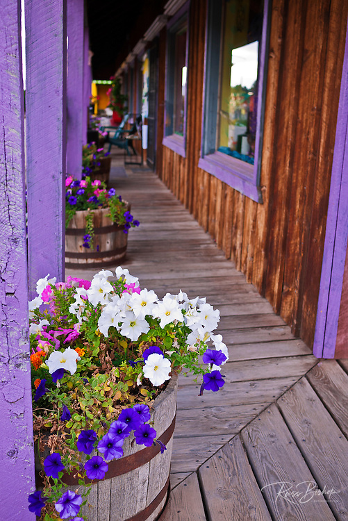 Flowers and boardwalk, Dolores, Colorado