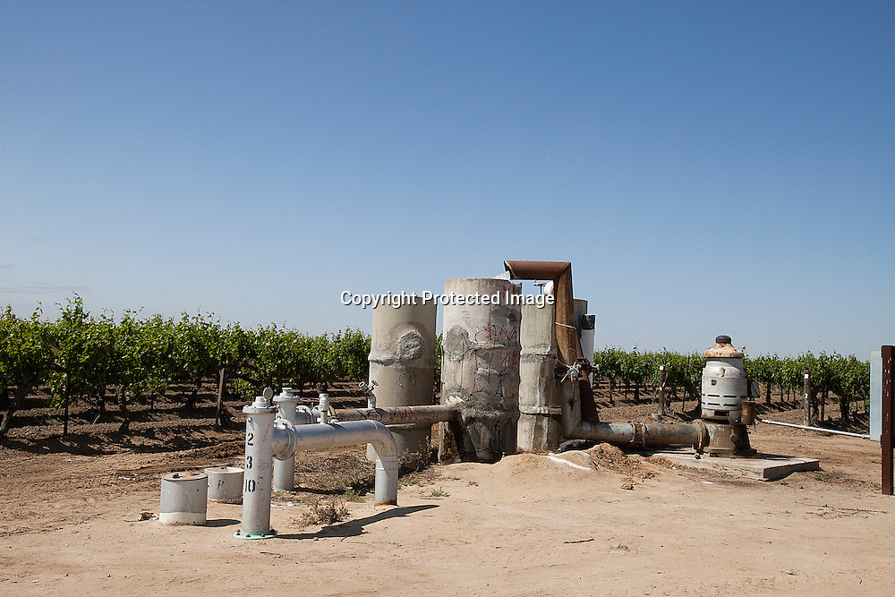 Grapes vine irrigation equipment in drought stricken Central Valley