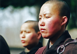 China, Wutai Shan, 2008. Initiates to an order of female Buddhists stand immobile in the sun, their red cheeks testament to the freezing temperatures of March.