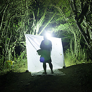 Steve Lingafelter, entomologist, collects insects using a black light in the Dominican Republic.