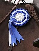 Side Saddle Association - 2013