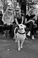 Young Ladies and sweet Dog enjoying a Beautiful Day in Central Park, NYC.