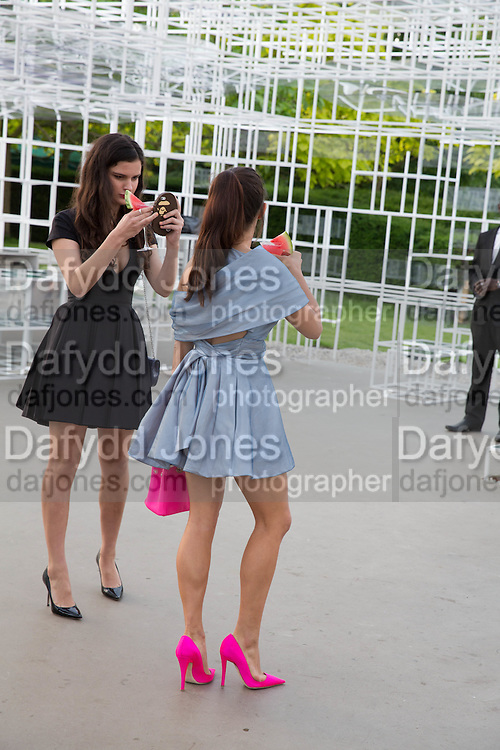 EVANGELINE LING; BIP LING, The Serpentine Summer Party 2013 hosted by Julia Peyton-Jones and L'Wren Scott.  Pavion designed by Japanese architect Sou Fujimoto. Serpentine Gallery. 26 June 2013. ,
