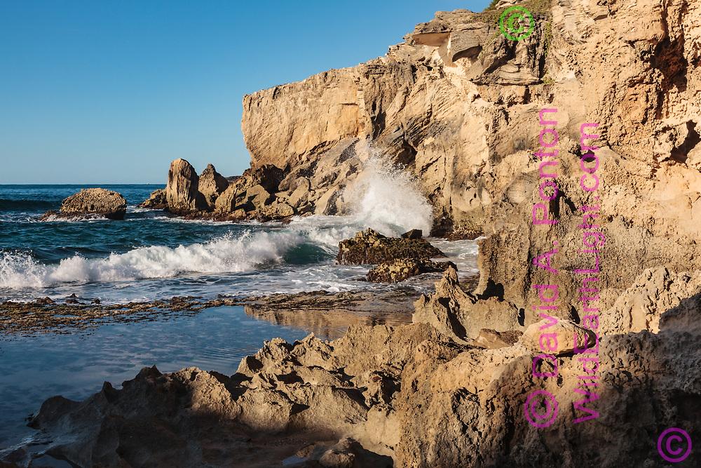 Wave breaks on sea cliffs along the southeastern shore of Kauai, © 2010 David A. Ponton