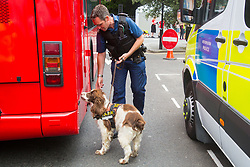 London, July 8th 2017. Thousands of LGBT+ revellers take part in the annual Pride in London parade under the banner #LoveHappensHere. PICTURED: A Police officer and his sniffer dog Bailey carry out checks on a bus that will take part in the parade, where there is a significant uplift in security following the recent terror attacks in London and Manchester.