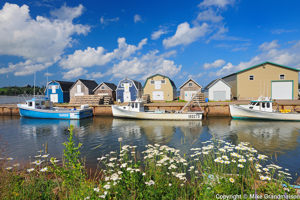 Fishing boats and sheds in coastal village