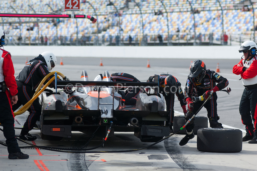 #25 8Star Motorsports ORECA FLM09: Enzo Potolicchio, Tom Kimber-Smith, Mike Marsal