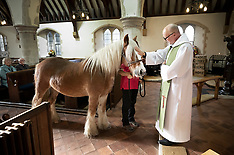 2019_10_06_Blessing_Of_Animals_PM