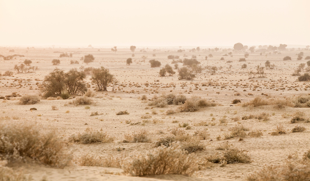 A view looking out at the Thar Desert in Western Rajasthan, India.