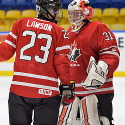 WHITBY, - Dec 16, 2015 -  Game #8 - Czech Republic vs. Canada East at the 2015 World Junior A Challenge at the Iroquois Park Recreation Complex, ON. Geoff Lawson #23 of Team Canada East has a word with goaltender Nicholas Latinovich #31 during a stoppage in play in the first period.<br /> (Photo: Shawn Muir / OJHL Images)